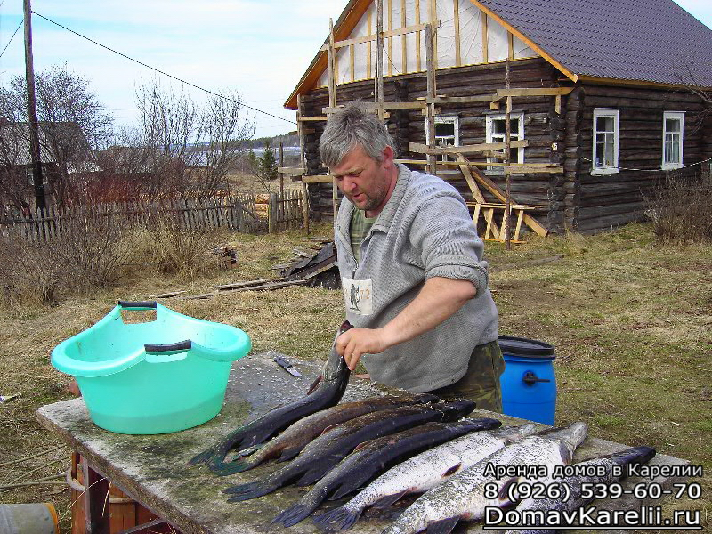 рыбалка в карелии цены